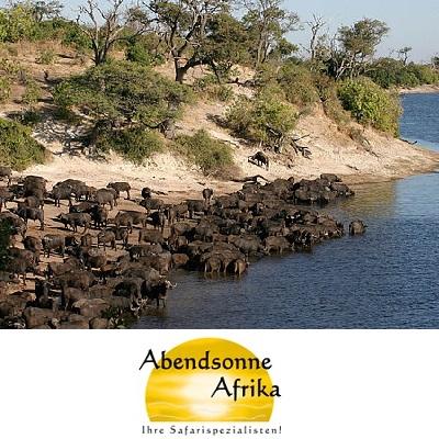 Traumreise Botswana – Die besten Safariplätze