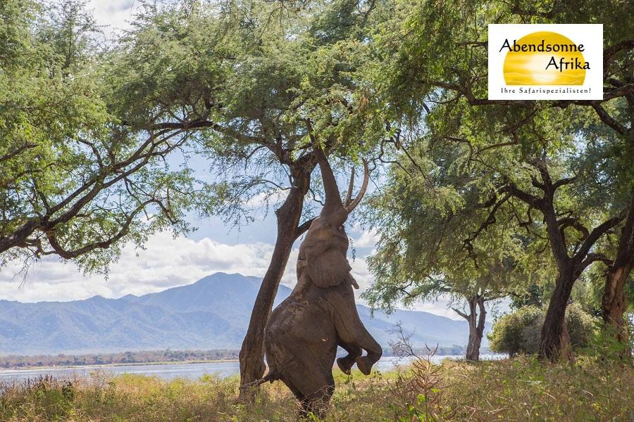 Sambia und Simbabwe – Hier schlägt das Herz Afrikas