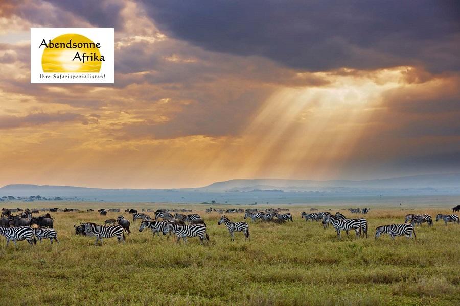 Tansania – Das Land der Savannen