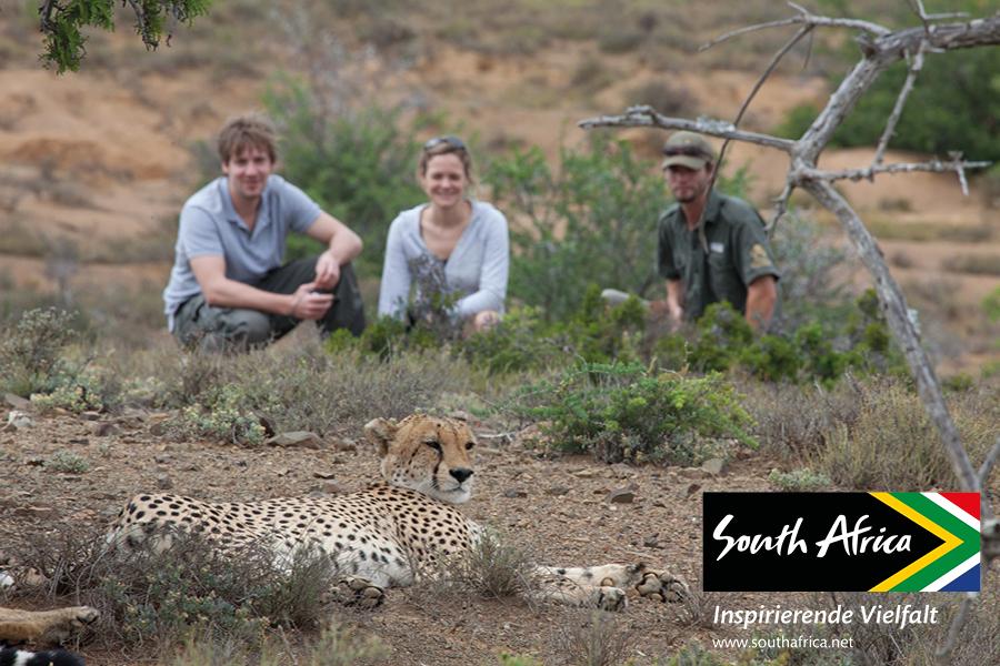 """Südafrikas Wildlife-Safari: Begegnungen mit den """"Big Five"""""""